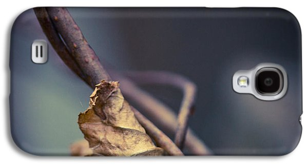 Vine Leaves Galaxy S4 Cases - Trapped Galaxy S4 Case by Shane Holsclaw