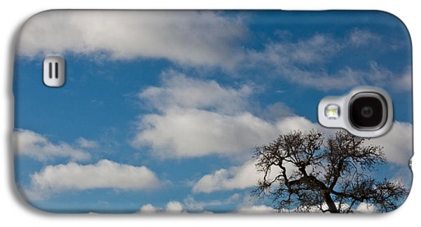 Wine Scene Galaxy S4 Cases - Tree And Fence On A Landscape, Santa Galaxy S4 Case by Panoramic Images