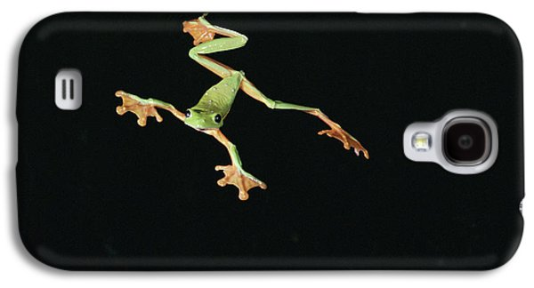 Flying Frog Galaxy S4 Cases - Tree And Leaf Frog Jumping Galaxy S4 Case by Michael and Patricia Fogden