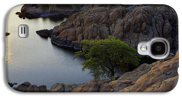 Watson Lake Galaxy S4 Cases - Tree at Sunset at the Granite Dells Arizona Galaxy S4 Case by Dave Dilli