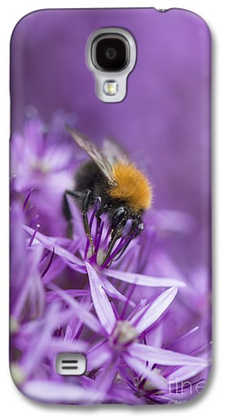 Pollinate Galaxy S4 Cases - The Tree Bumblebee Galaxy S4 Case by Tim Gainey