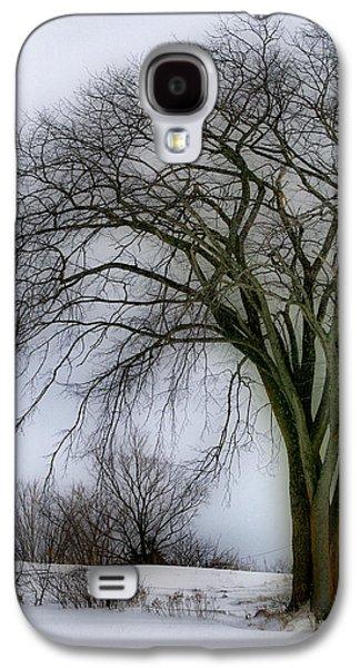 Snow Tree Prints Galaxy S4 Cases - Tree Elder Galaxy S4 Case by Deborah Benoit