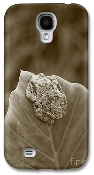Flying Frog Galaxy S4 Cases - Tree frog on a leaf Galaxy S4 Case by Dwight Cook