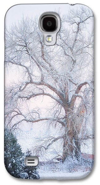Winter Trees Photographs Galaxy S4 Cases - Tree of Snow Galaxy S4 Case by Darren  White