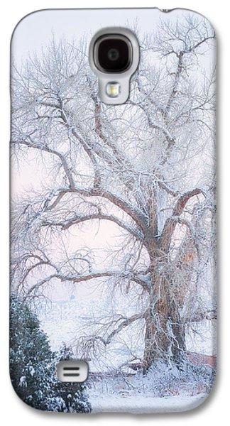 Winter Scene Galaxy S4 Cases - Tree of Snow Galaxy S4 Case by Darren  White