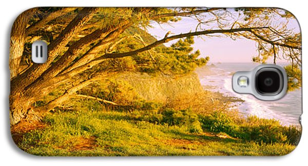 Tree On The Coast, Big Sur, California Galaxy S4 Case by Panoramic Images