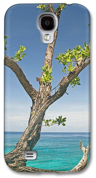 Overhang Photographs Galaxy S4 Cases - Tree Overhanging Sea At Xtabi Hotel Galaxy S4 Case by Panoramic Images