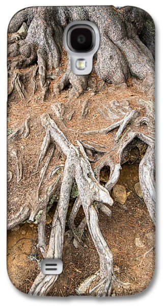 Tree Roots Photographs Galaxy S4 Cases - Tree root Galaxy S4 Case by Matthias Hauser