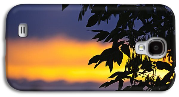 Setting Sun Galaxy S4 Cases - Tree silhouette over sunset Galaxy S4 Case by Elena Elisseeva