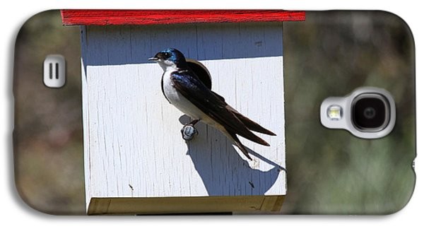 Tree Swallow Home Galaxy S4 Case by Mike  Dawson