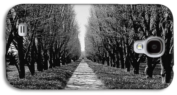 Garden Scene Galaxy S4 Cases - Trees Along A Walkway In A Botanical Galaxy S4 Case by Panoramic Images