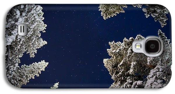 Temperature Galaxy S4 Cases - Trees And Stars, Cold Temperatures Galaxy S4 Case by Panoramic Images