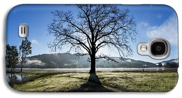 Santa Cruz Ca Galaxy S4 Cases - Trees Are Us Galaxy S4 Case by Sean Foster