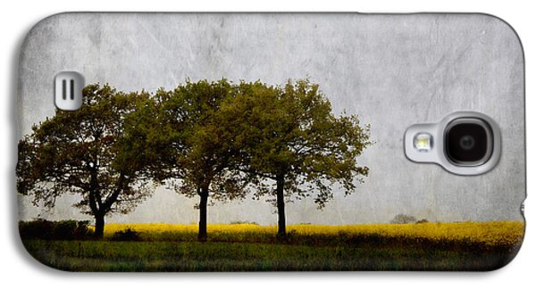 Trees Photographs Galaxy S4 Cases - Trees at Sunrise Galaxy S4 Case by Carol Leigh