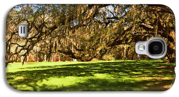 Garden Scene Galaxy S4 Cases - Trees Covered With Spanish Moss Galaxy S4 Case by Panoramic Images