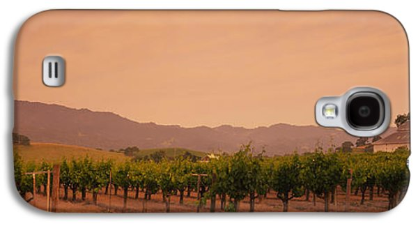 Vineyard In Napa Galaxy S4 Cases - Trees In A Vineyards, Napa Valley Galaxy S4 Case by Panoramic Images