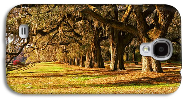 Garden Scene Galaxy S4 Cases - Trees In Garden, Boone Hall Plantation Galaxy S4 Case by Panoramic Images