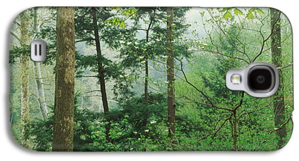 Indiana Scenes Galaxy S4 Cases - Trees In Spring Forest, Turkey Run Galaxy S4 Case by Panoramic Images
