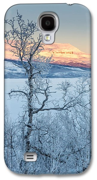 Temperature Galaxy S4 Cases - Trees In The Frozen Landscape, Cold Galaxy S4 Case by Panoramic Images