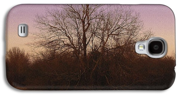 R. Mclellan Photography Galaxy S4 Cases - Trees in the Setting Sun Galaxy S4 Case by R McLellan