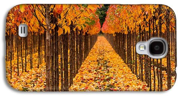 Yellow Line Galaxy S4 Cases - Treescape 4 Galaxy S4 Case by Rebecca Cozart