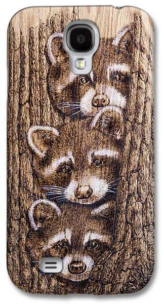 Metal Prints Pyrography Galaxy S4 Cases - Tres Amegos Galaxy S4 Case by Ron Haist