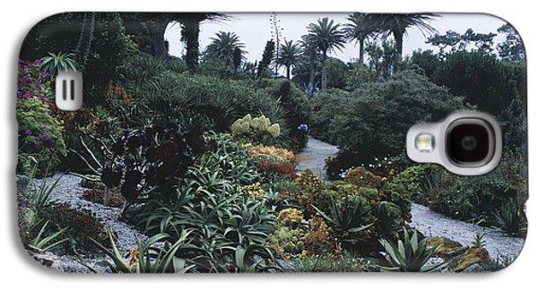 Garden Scene Galaxy S4 Cases - Tresco Abbey Garden Galaxy S4 Case by Adrian Thomas