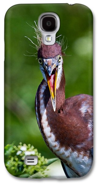 Outdoors Galaxy S4 Cases - Tricolored Heron in Awe Galaxy S4 Case by Andres Leon