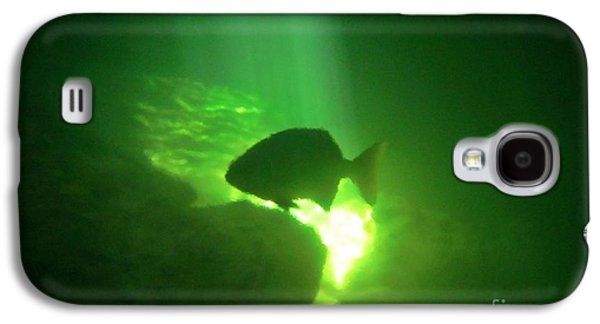 Yucatan Penisnsula Galaxy S4 Cases - Tropical Fish Shilouette in a Cenote Galaxy S4 Case by Halifax photography by John Malone