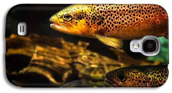 Biology Photographs Galaxy S4 Cases - Trout swiming in a River Galaxy S4 Case by Bob Orsillo