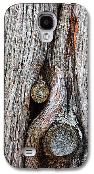 Nature Abstracts Galaxy S4 Cases - Trunk Knot Galaxy S4 Case by Carlos Caetano