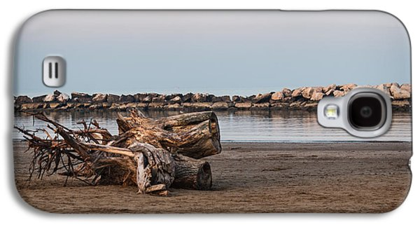 Tree Roots Pyrography Galaxy S4 Cases - Trunk on the beach Galaxy S4 Case by Andrea Casali