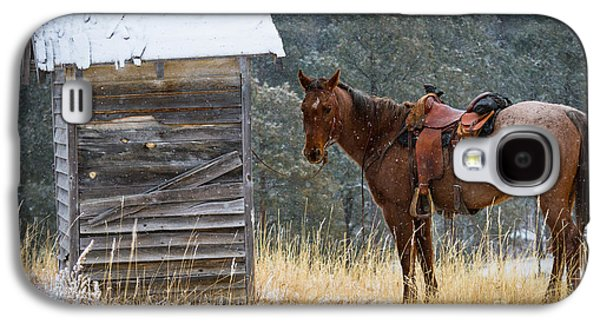North America Galaxy S4 Cases - Trusty Horse  Galaxy S4 Case by Inge Johnsson