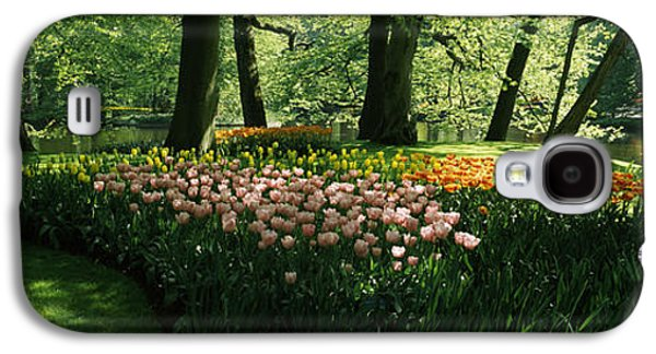 Garden Scene Galaxy S4 Cases - Tulip Flowers And Trees In Keukenhof Galaxy S4 Case by Panoramic Images