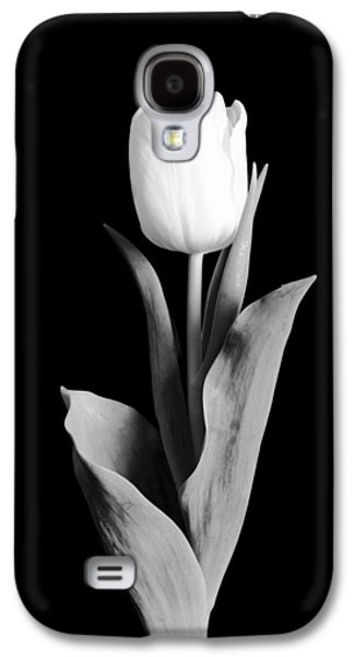 Studio Photographs Galaxy S4 Cases - Tulip Galaxy S4 Case by Sebastian Musial