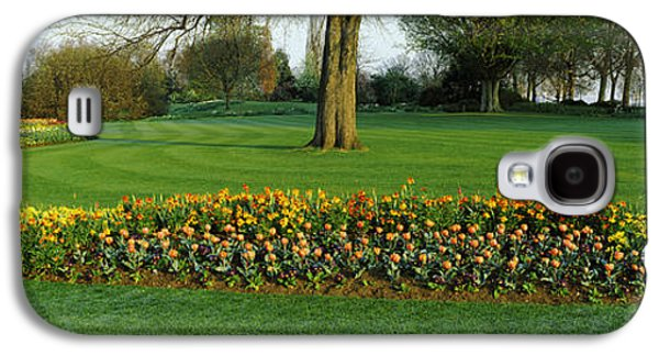 Tulips In Hyde Park, City Galaxy S4 Case by Panoramic Images