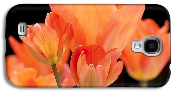 Tulips In Shades Of Orange Galaxy S4 Case by Rona Black