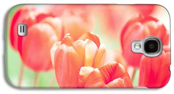 Kaypickens.com Galaxy S4 Cases - Tulips in the Sun Galaxy S4 Case by Kay Pickens