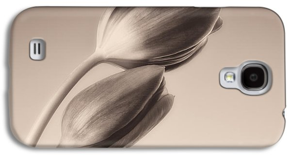 Gradient Galaxy S4 Cases - Tulips Monochrome Galaxy S4 Case by Wim Lanclus