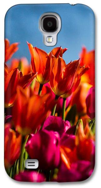 Cheekwood Galaxy S4 Cases - Tulips Galaxy S4 Case by Paula Ponath