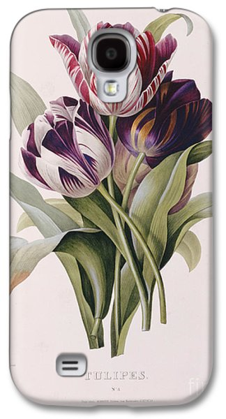 Tulips Galaxy S4 Case by Pierre Joseph Redoute