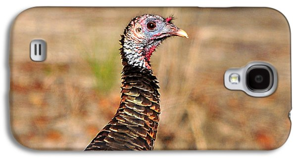 Wild Turkey Galaxy S4 Cases - Turkey Profile Galaxy S4 Case by Al Powell Photography USA