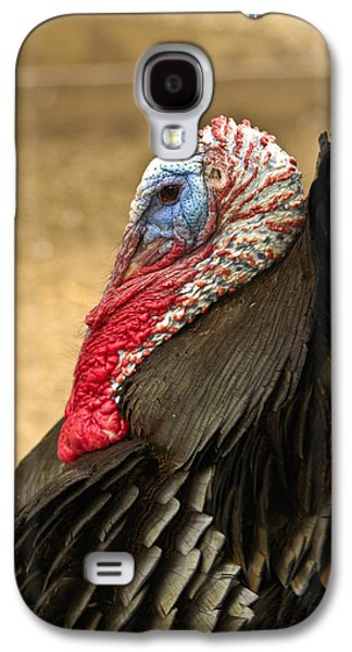 Wild Turkey Galaxy S4 Cases - Turkey Time Galaxy S4 Case by Carolyn Marshall