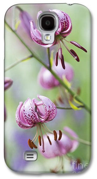 Stigma Galaxy S4 Cases - Turks Cap Lily Galaxy S4 Case by Tim Gainey