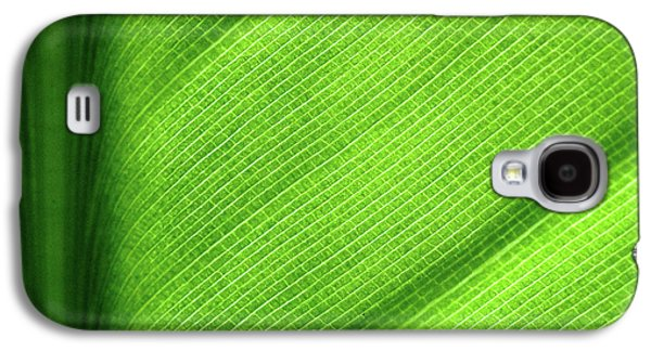 Turning A New Leaf Galaxy S4 Case by Rona Black