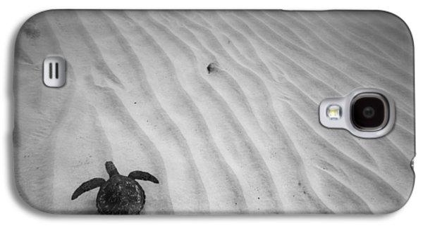 Under Water. Nature Galaxy S4 Cases - Turtle Ridge Galaxy S4 Case by Sean Davey