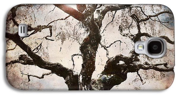 Apple Trees Galaxy S4 Cases - Twisted Tree I Galaxy S4 Case by April Moen