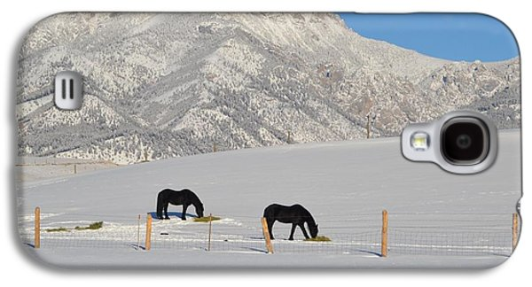 Animals Jewelry Galaxy S4 Cases - Two Black Horses Galaxy S4 Case by Anne Foster