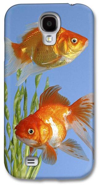 Greg Cuddiford Digital Art Galaxy S4 Cases - Two Fish FS101 Galaxy S4 Case by Greg Cuddiford