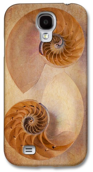 Warm Tones Galaxy S4 Cases - Two Nautilus Shells Galaxy S4 Case by Garry Gay